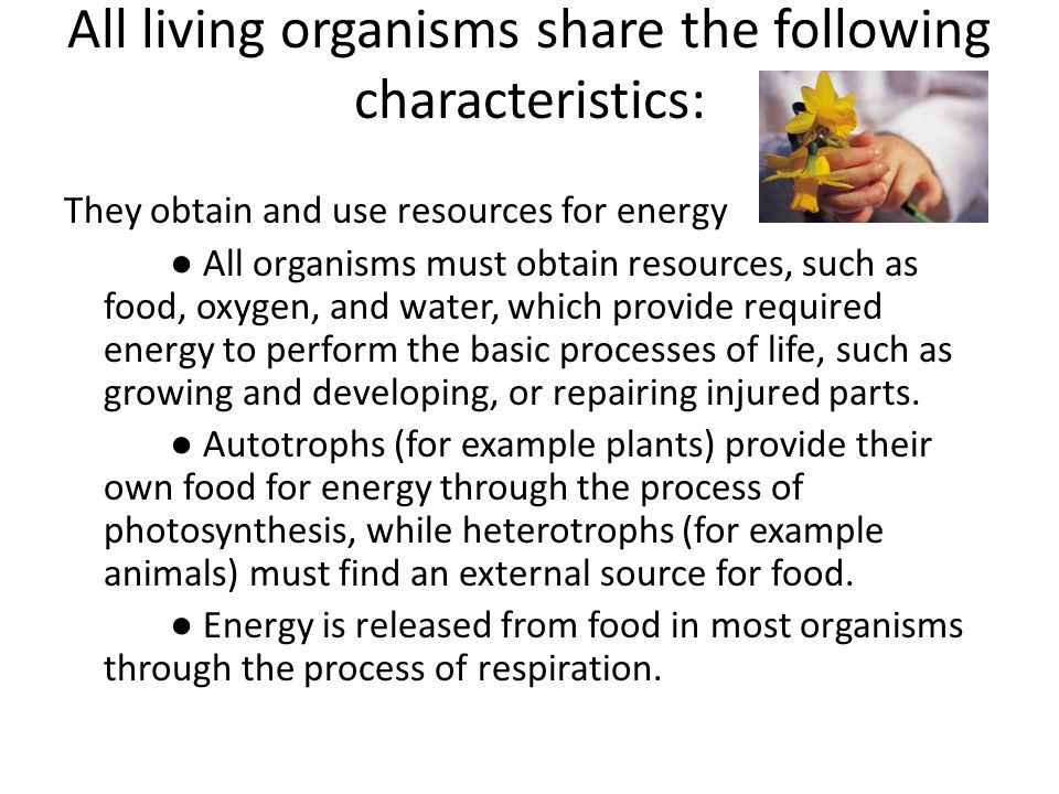 a description of the composition of all living organisms In all these environments, organisms interact and use available resources, such as food, space, light, heat, water, air, and shelter each population of organisms, and the individuals within it, interact in specific ways that are limited by and can benefit from other organisms.