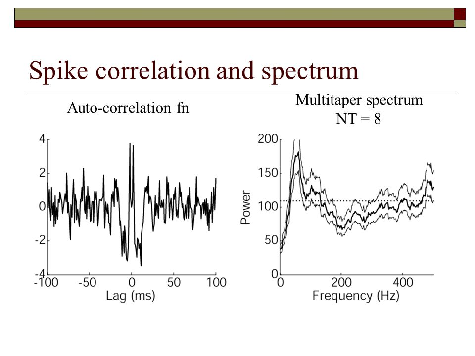 Spike correlation and spectrum