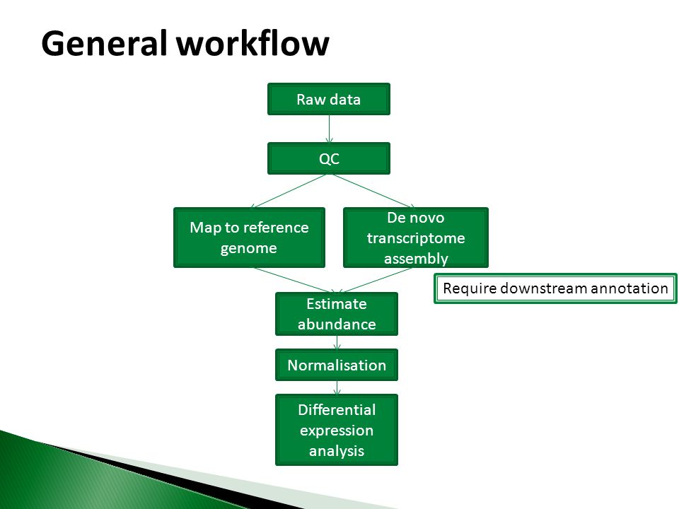 General workflow Raw data QC De novo transcriptome assembly