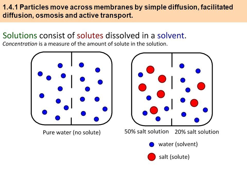 osmosis and particles diffusion