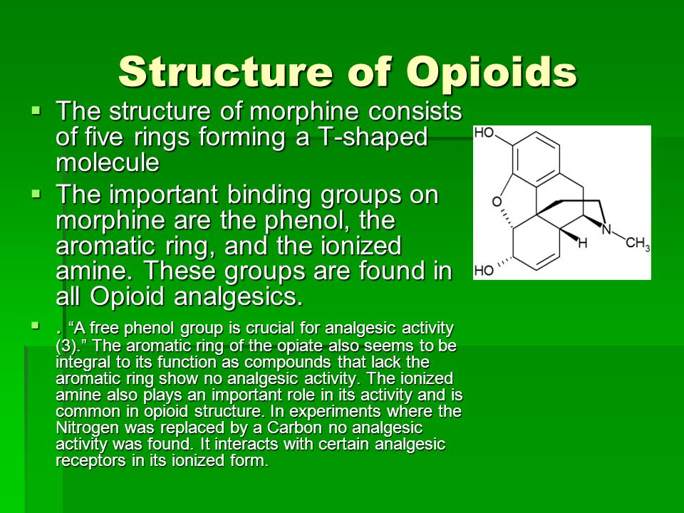 Structure of Opioids The structure of morphine consists of five rings forming a T-shaped molecule.