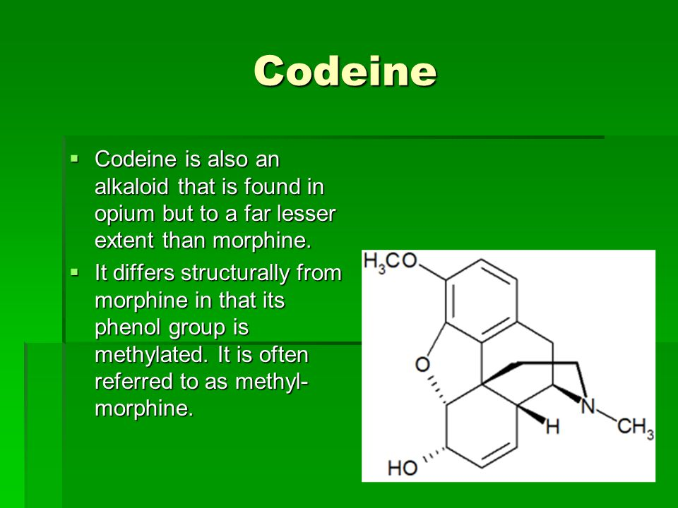 Codeine Codeine is also an alkaloid that is found in opium but to a far lesser extent than morphine.