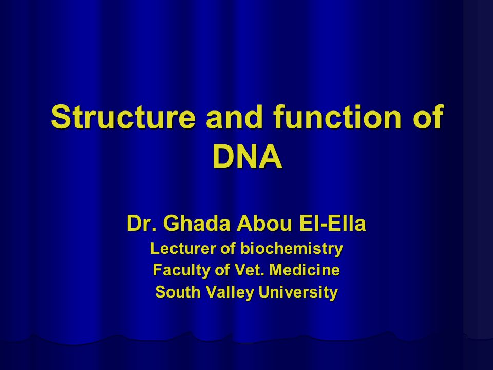 the structure and function of dna Each chromosome is made up of dna tightly coiled many times around proteins called histones that support its structure.