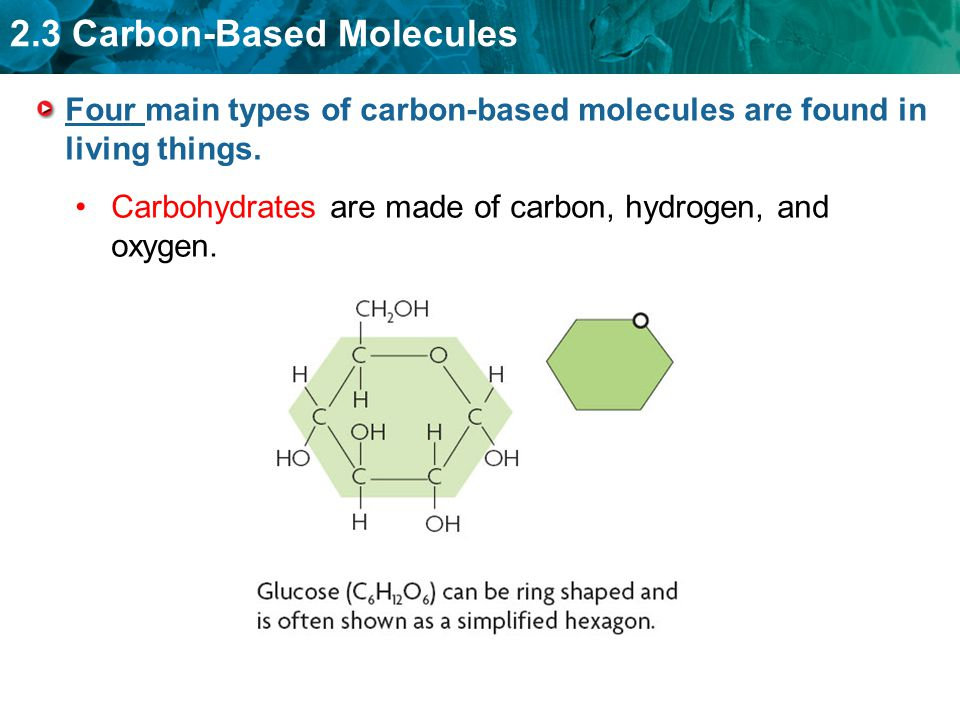 Carbon Based Molecules Worksheet - The Best and Most Comprehensive ...