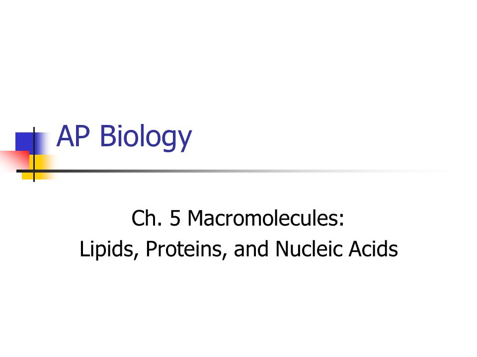 topic 1 biological molecules nucleic acids Bio 3a lab: biologically important molecules page 1 of 11 each class of these  macromolecules has different structures and properties for example, lipids.