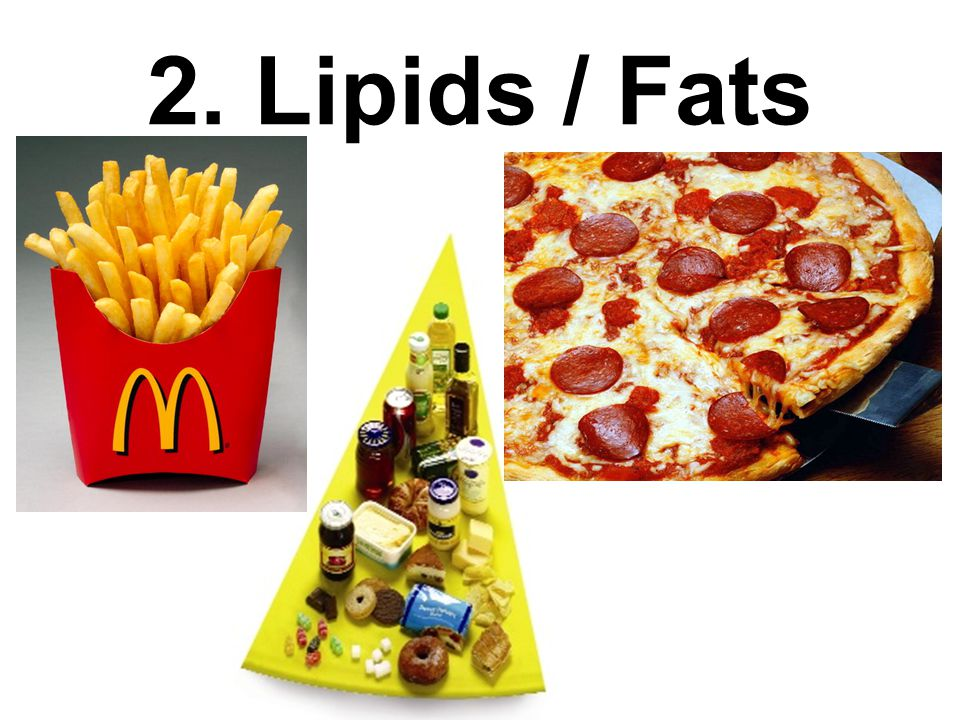 Building Blocks Of Fats And Lipids