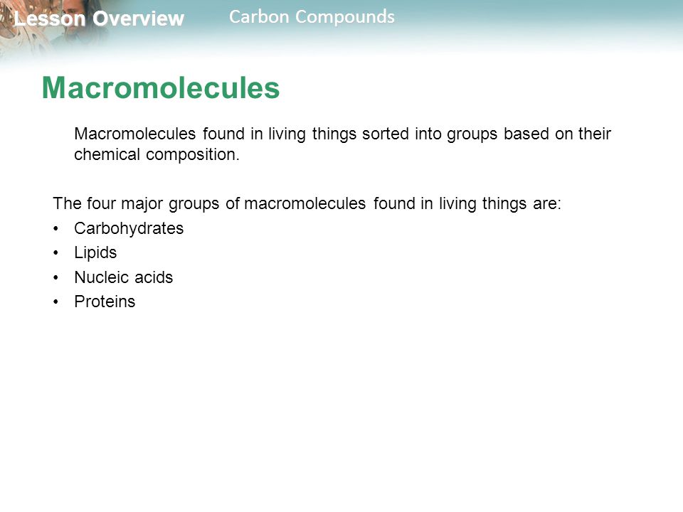 Macromolecules Macromolecules found in living things sorted into groups based on their chemical composition.