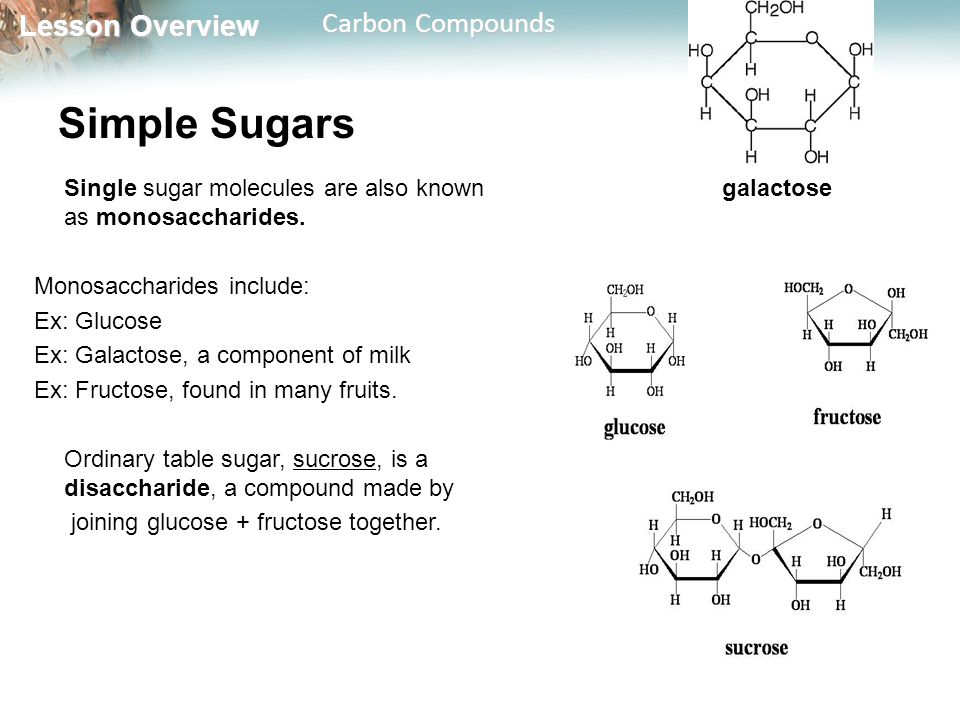 Simple Sugars Single sugar molecules are also known as monosaccharides. Monosaccharides include: Ex: Glucose.