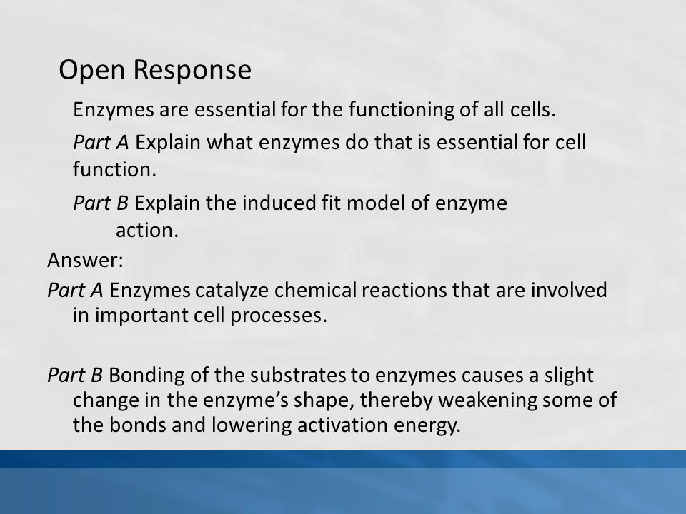Open Response Enzymes are essential for the functioning of all cells.