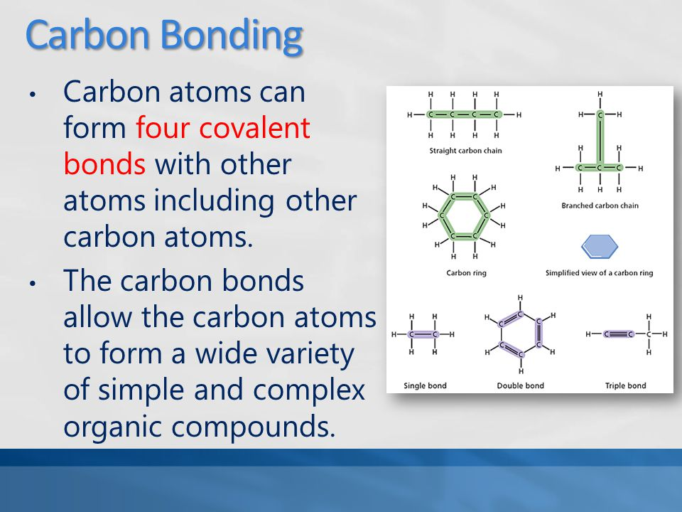 Carbon Bonding Carbon atoms can form four covalent bonds with other atoms including other carbon atoms.