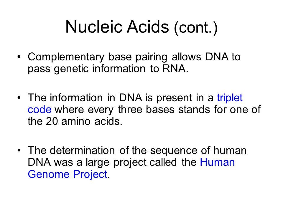Essentials of Biology Sylvia S. Mader - ppt video online download