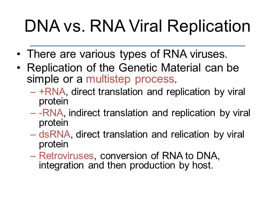 Pcr Vs Natural Dna Replication