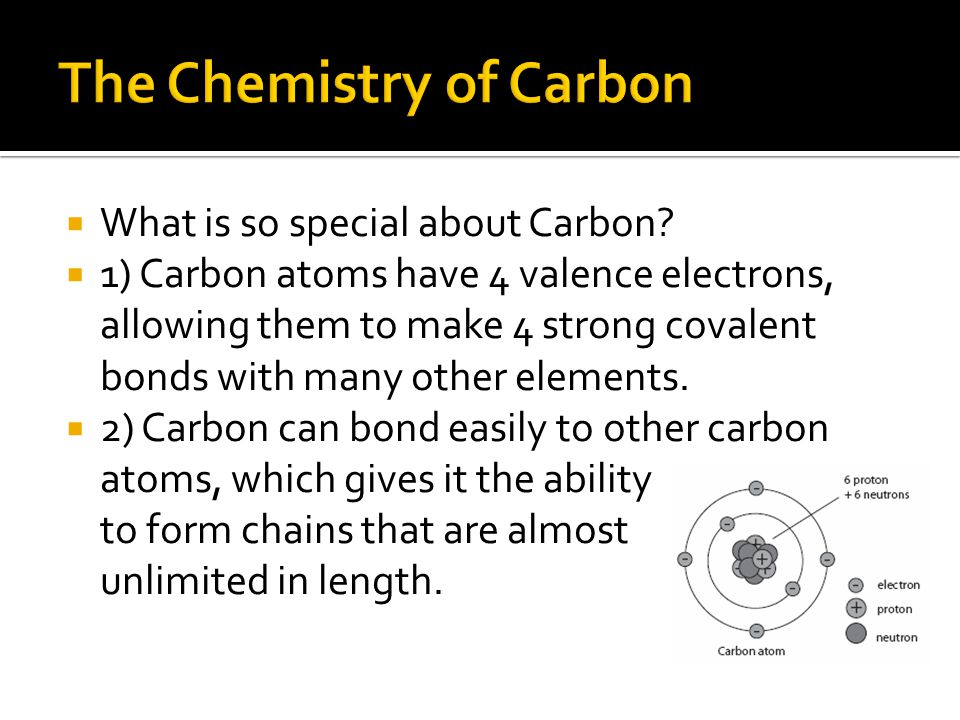 Pre-AP Biology: The Molecules of Life - ppt video online download