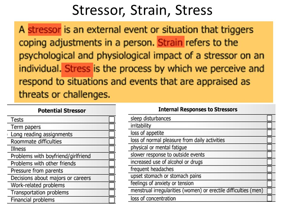 Ap Psych Exam Review Walenga Ppt Download