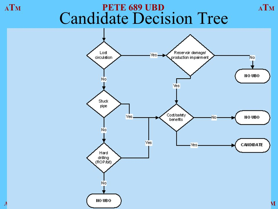 Candidate Decision Tree