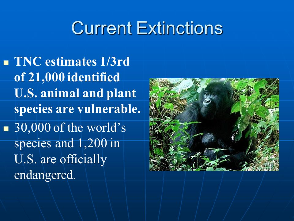 causes of animal and plant extinction The biodiversity of an area is literally the number of species, both plant and animal, inhabiting the environment being examined when a species is no longer found in a region, it is locally extinct when it is no longer found anywhere, the species is considered extinct.
