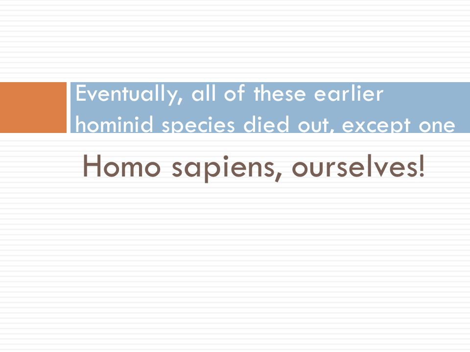 Eventually, all of these earlier hominid species died out, except one