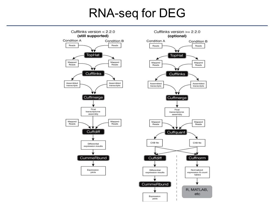 RNA-seq for DEG