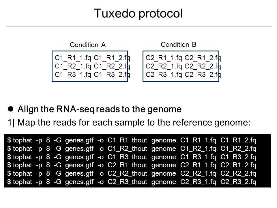 Tuxedo protocol Align the RNA-seq reads to the genome