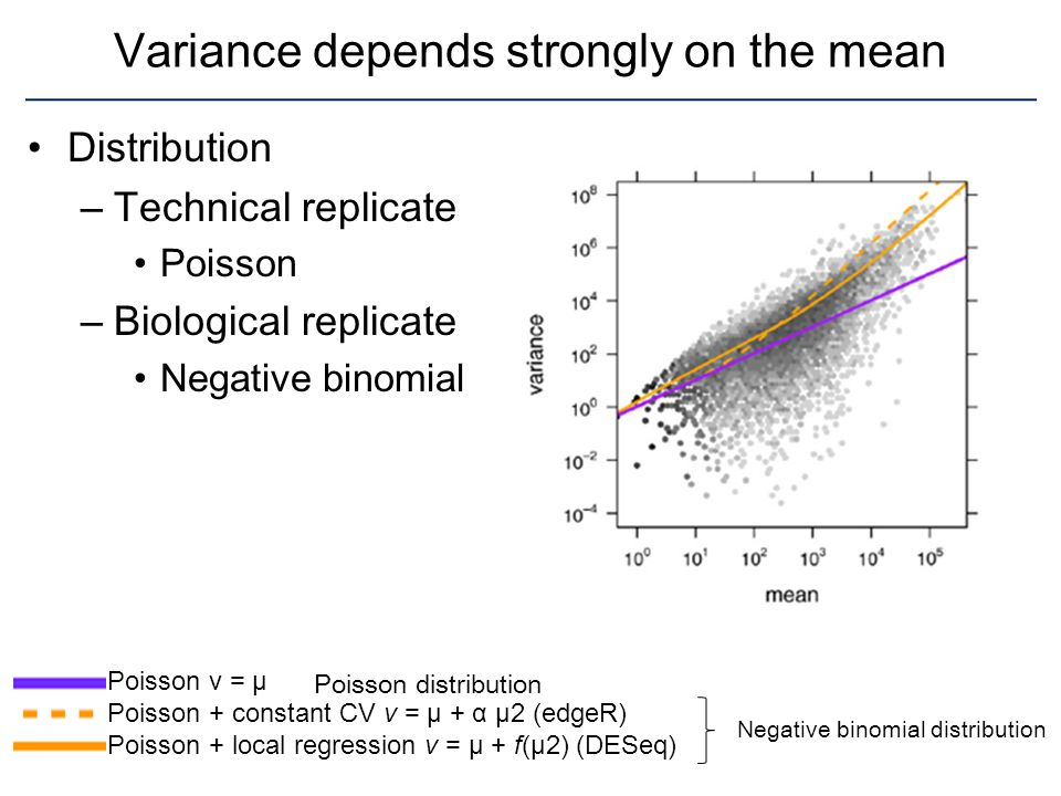 Variance depends strongly on the mean