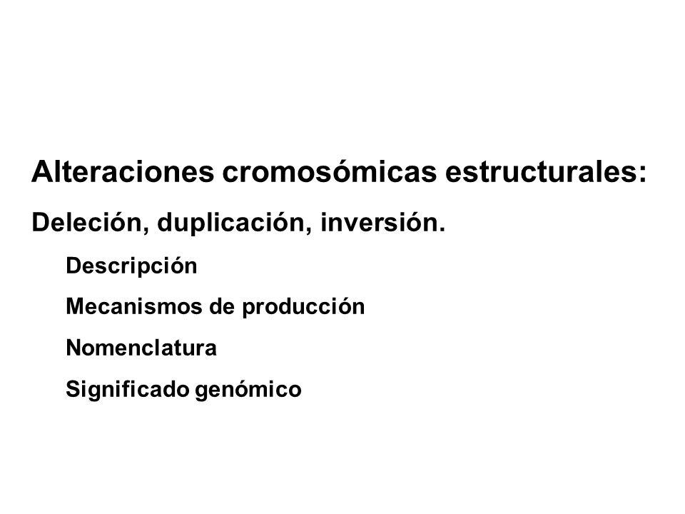 Alteraciones cromosómicas estructurales: