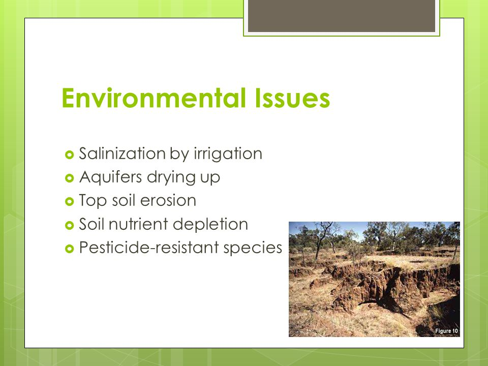 Environmental Issues Salinization by irrigation Aquifers drying up