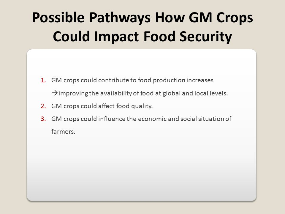 Possible Pathways How GM Crops Could Impact Food Security