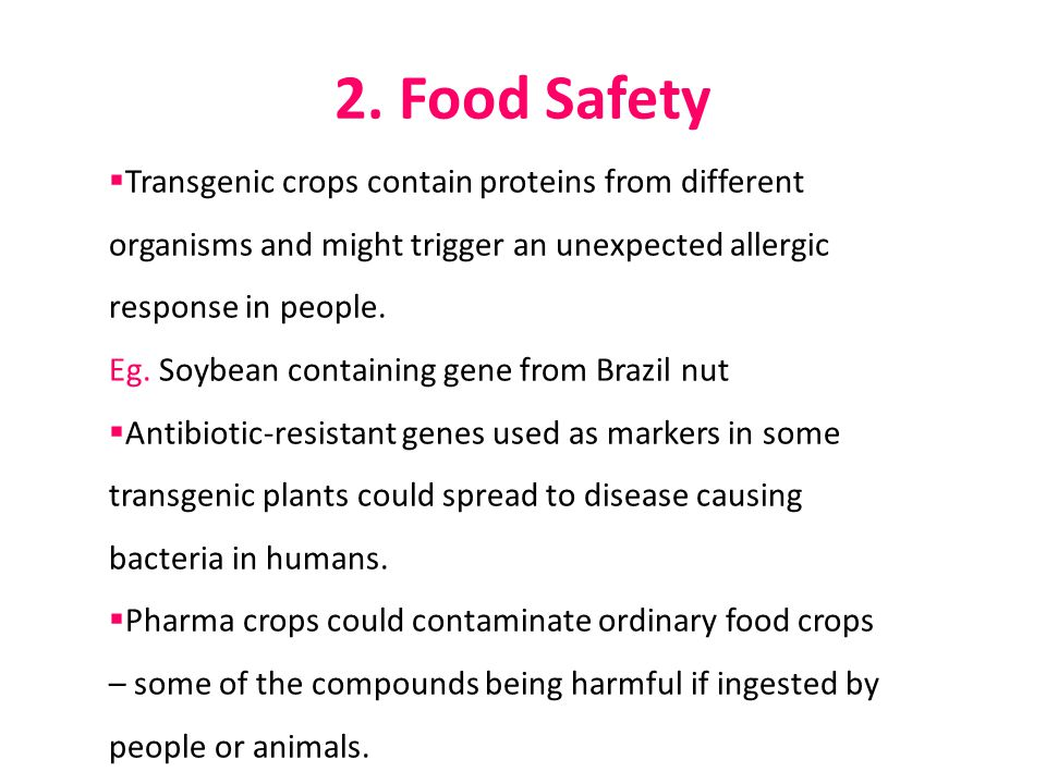 2. Food Safety Transgenic crops contain proteins from different organisms and might trigger an unexpected allergic response in people.