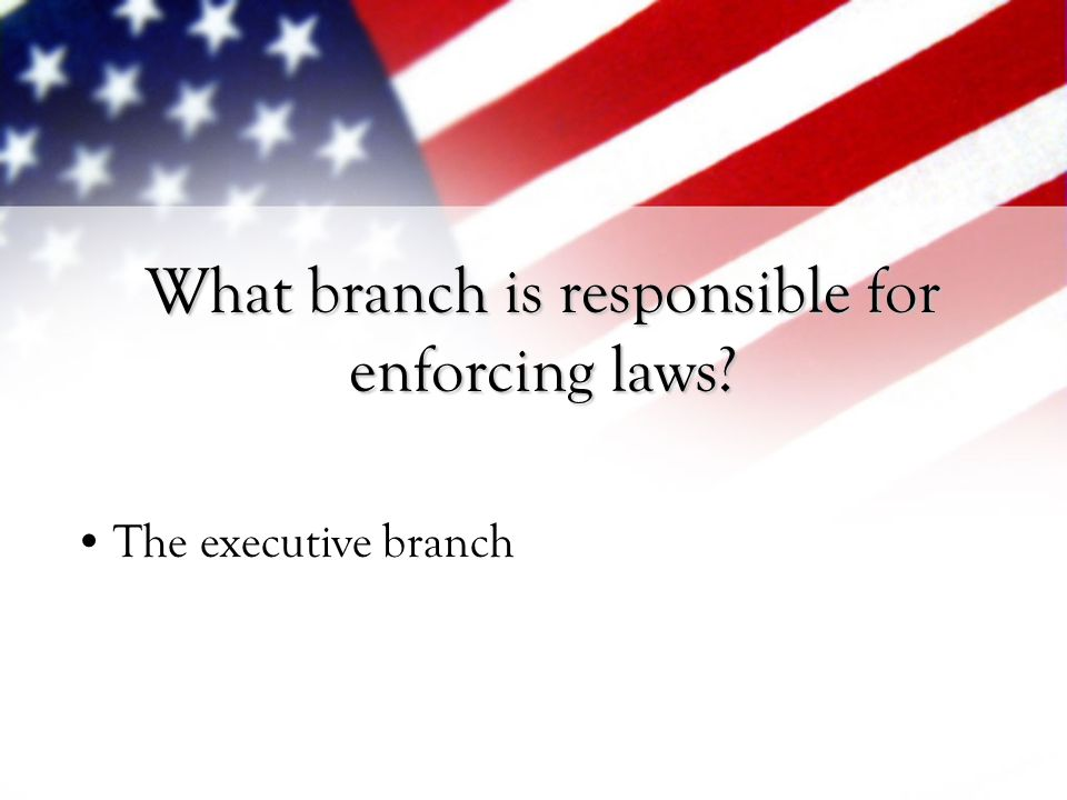 What branch is responsible for enforcing laws