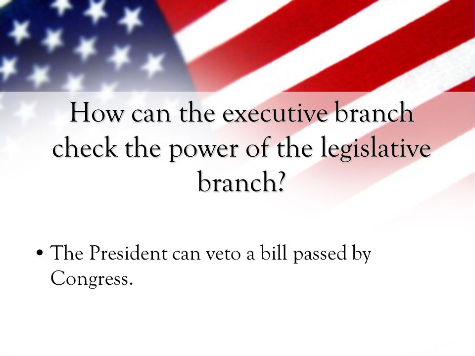 How can the executive branch check the power of the legislative branch