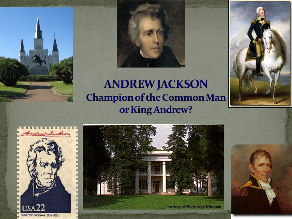 an introduction to the life and political history of andrew jackson In this, the first major single-volume biography of andrew jackson in  though it  did nothing to dissuade my low opinion of his political prowess, i would still.