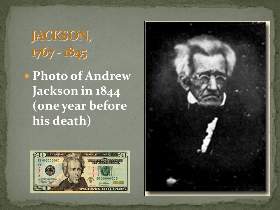 andrew jackson champion of the people or king andrew People are not black and white, there is only shades of grey how you view them determines their appearance andrew jackson is a interesting figure not.