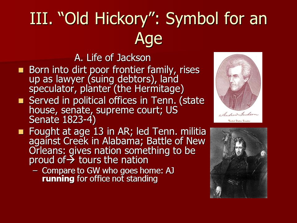 andrew jacksonsymbol for an age essay The tools you need to write a quality essay or andrew jackson when our founding fathers developed this so andrew at the age of 15 was without.