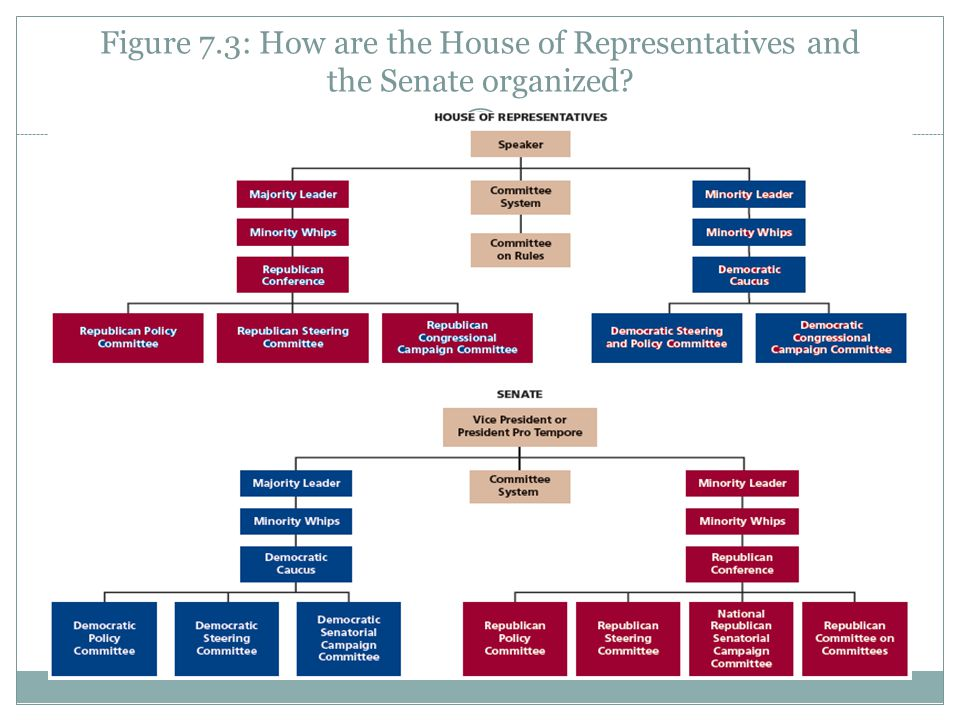 Figure 7.3: How are the House of Representatives and the Senate organized