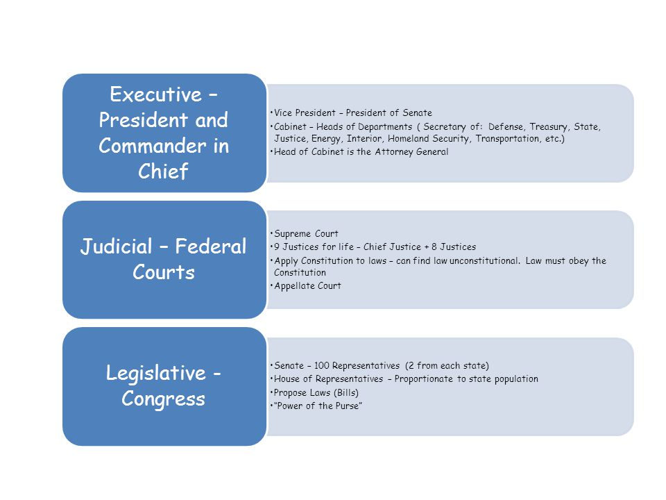 Three Branches of the Government - ppt download