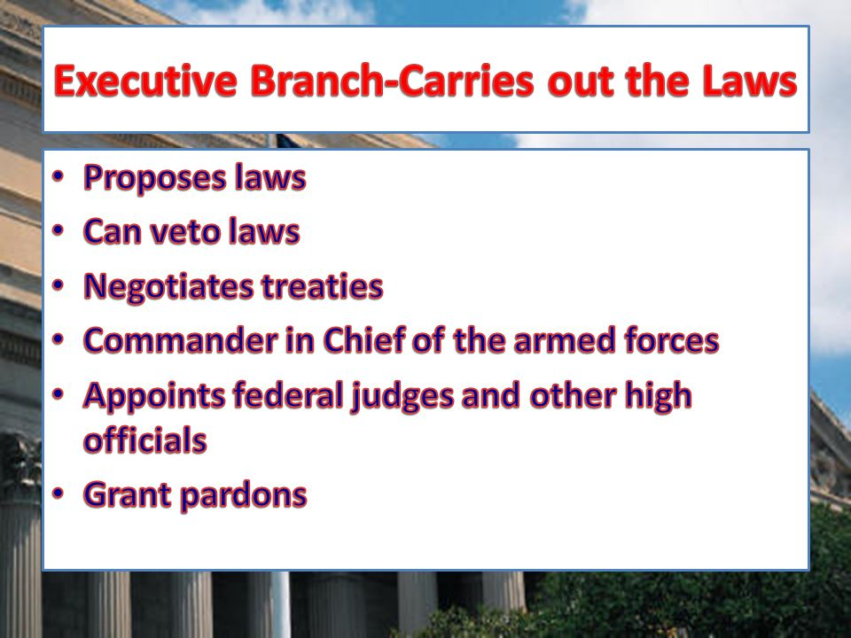 Executive Branch-Carries out the Laws