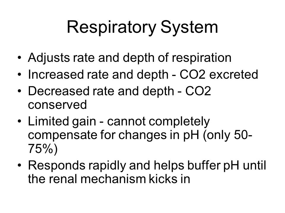 Respiratory System Adjusts rate and depth of respiration