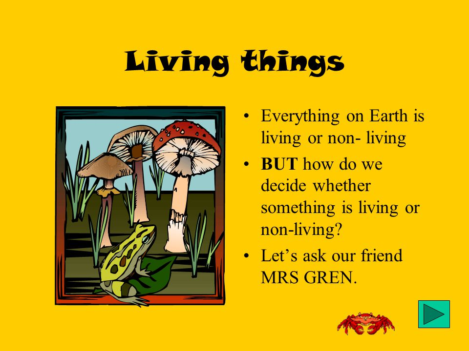 an overview of living things on earth