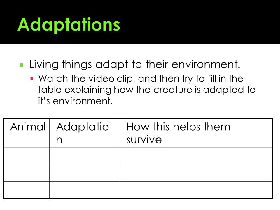 adaptive features of desert plants and animals Desert plants and animals adaptations -for kids animals and plants living in a desert have developed special features.