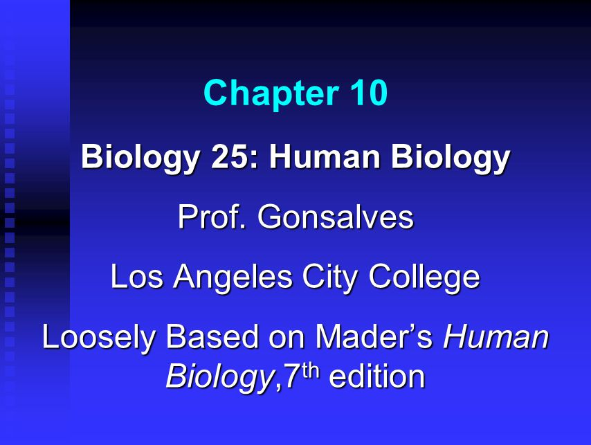 Chapter 10 biology 25 human biology prof gonsalves ppt video chapter 10 biology 25 human biology prof gonsalves fandeluxe Choice Image