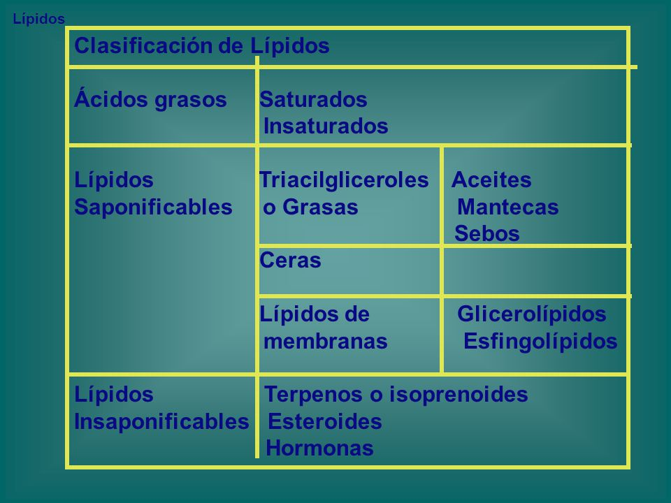Clasificación de Lípidos Ácidos grasos Saturados Insaturados
