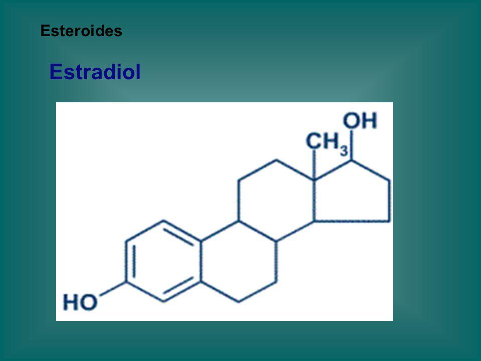 Esteroides Estradiol