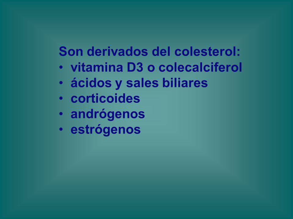 Son derivados del colesterol:
