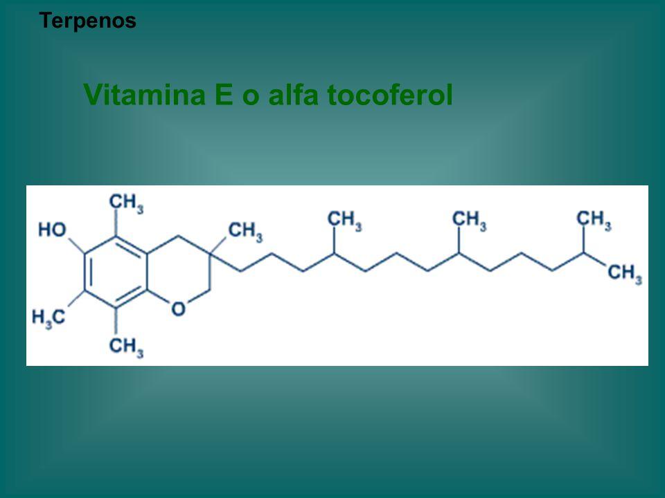 Vitamina E o alfa tocoferol