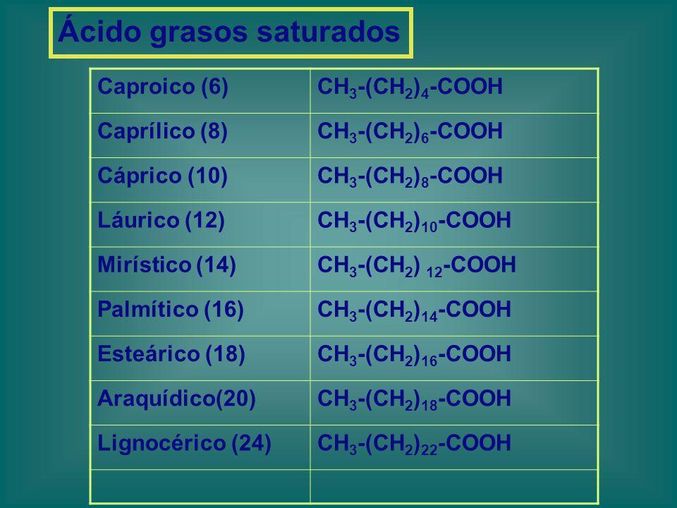 Ácido grasos saturados