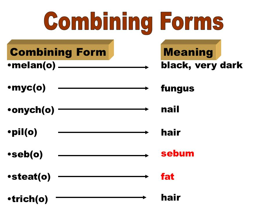 medical dictionary prefixes suffixes and combining forms