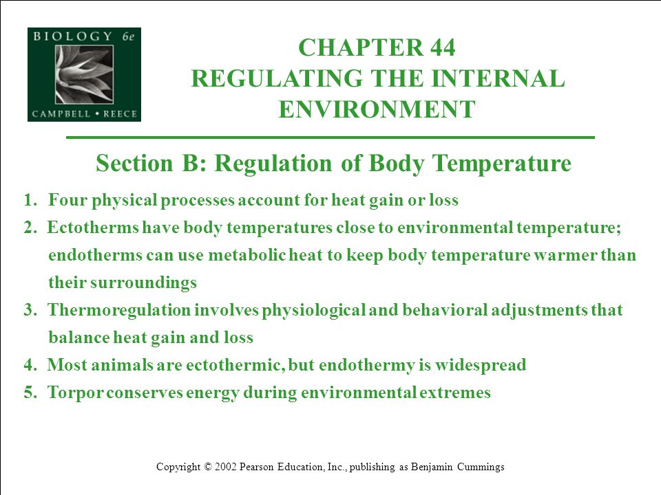 biology reading guide for chapter 35 It's youtube uninterrupted  not now try it free find out why close chapter 45 ap biology reading guide answers  ap biology chapter 46 animal.