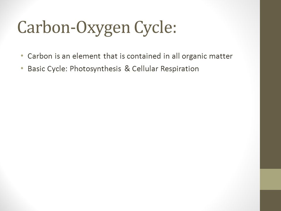 Carbon-Oxygen Cycle: Carbon is an element that is contained in all organic matter.