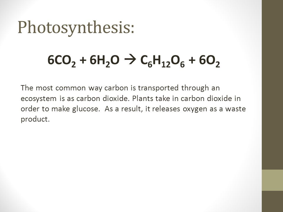 Photosynthesis: 6CO2 + 6H2O  C6H12O6 + 6O2