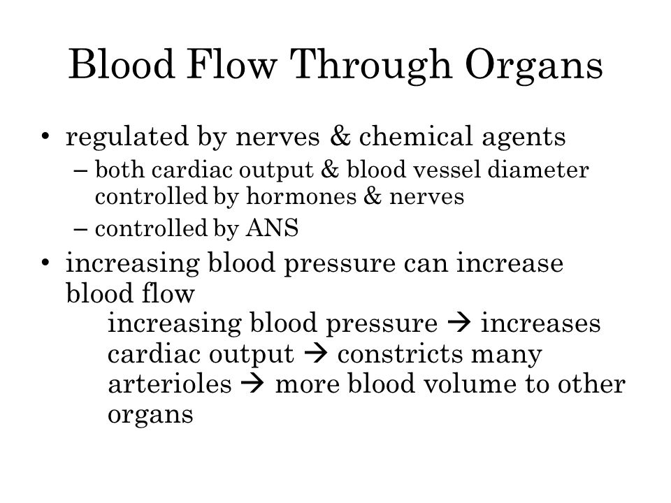 Blood Flow Through Organs